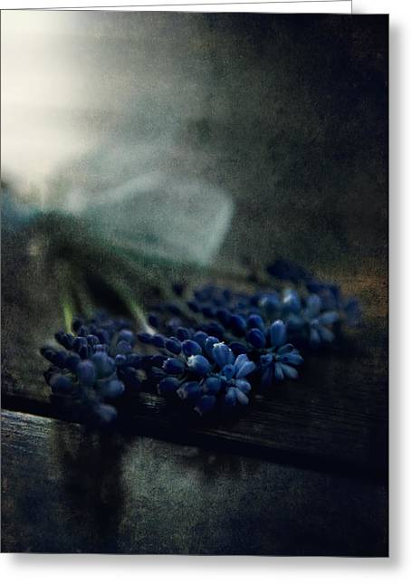 Throw Down Greeting Cards - Bouquet of grape hyiacints on the dark textured surface Greeting Card by Jaroslaw Blaminsky