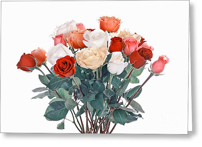 Various Greeting Cards - Bouquet of roses Greeting Card by Elena Elisseeva