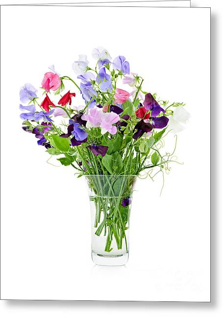 Best Sellers -  - Glass Vase Greeting Cards - Bouquet of sweet pea flowers Greeting Card by Elena Elisseeva
