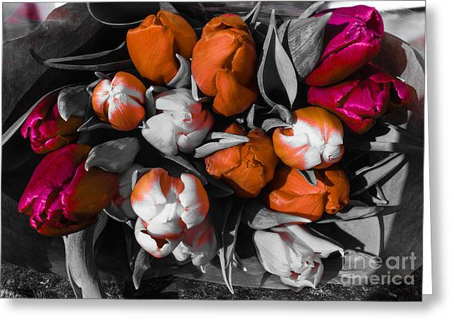 Pinks And Purple Petals Greeting Cards - Bouquet of Tulips Greeting Card by Babs Gorniak
