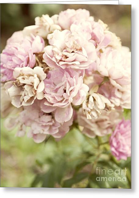 Beautiful Greeting Cards - Bouquet of Vintage Roses Greeting Card by Juli Scalzi