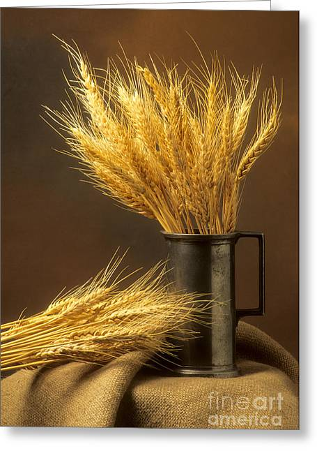 Bouquet Of Wheat Greeting Card by Bernard Jaubert