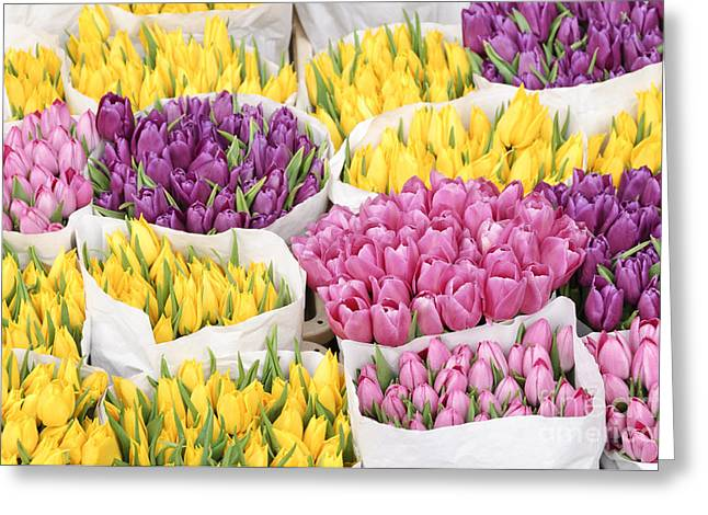 Europe Greeting Cards - Bouquets of tulip flowers at a flower market Greeting Card by Oscar Gutierrez