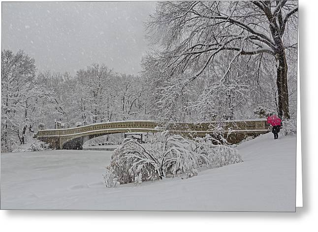 Bow Bridge Greeting Cards - Bow Bridge In Central Park During Snowstorm Greeting Card by Susan Candelario