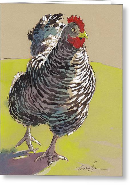 White Chicken Greeting Cards - Bow Chicka WowWow Greeting Card by Tracie Thompson