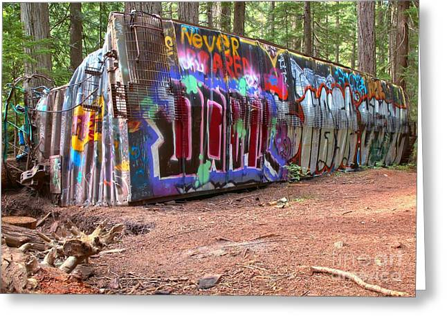 Sea To Sky Highway Greeting Cards - Box Car Art In British Columbia Greeting Card by Adam Jewell
