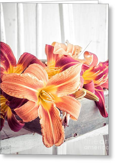 Box Of Day-lily  Greeting Card by Edward Fielding