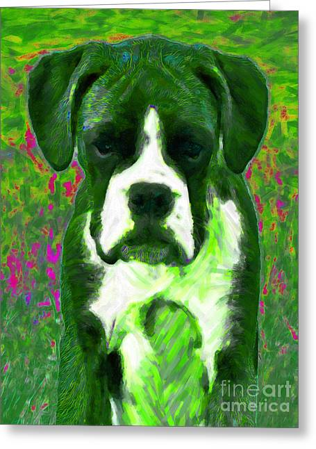 Puppies Digital Greeting Cards - Boxer 20130126v3 Greeting Card by Wingsdomain Art and Photography