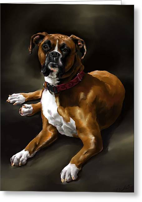 Boxer Greeting Card by Cassandra Gallant