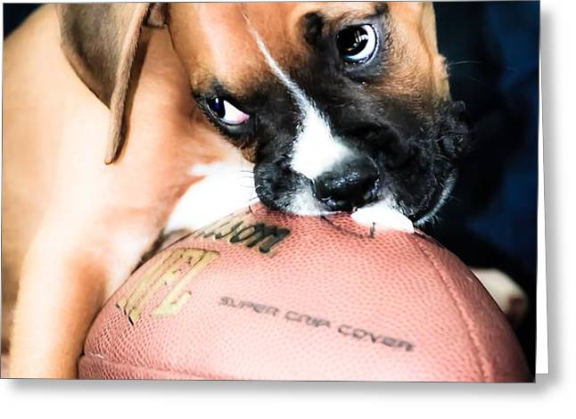 Boxer Puppy Cuteness Greeting Card by Peggy  Franz