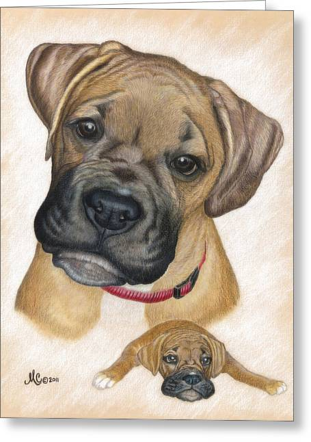 Puppies Drawings Greeting Cards - Boxer Puppy Greeting Card by Maureen Clarke