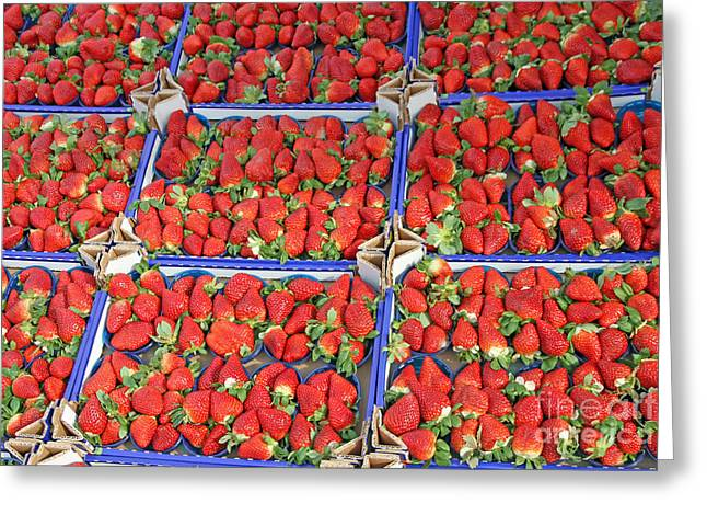 Food Safe Greeting Cards - Boxes Full Of Juicy Red Strawberries And Sold At Local Market Greeting Card by Federico Candoni