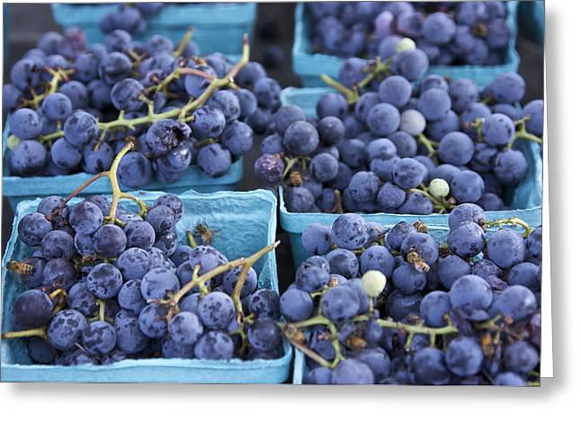 Concord Grapes Greeting Cards - Boxes of Fresh Concord Grapes at farmers market in NYC. Greeting Card by Scott W Baker
