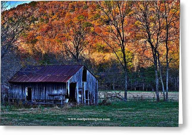 Boxley Valley Greeting Cards - Boxley Valley Barn Greeting Card by Noel Pennington