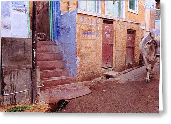 Children Only Greeting Cards - Boy And A Bull In Front Of Building Greeting Card by Panoramic Images