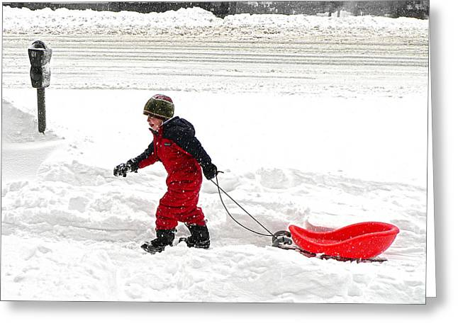 Tobogganing Greeting Cards - Boy in Blizzard Greeting Card by Jeff Stein