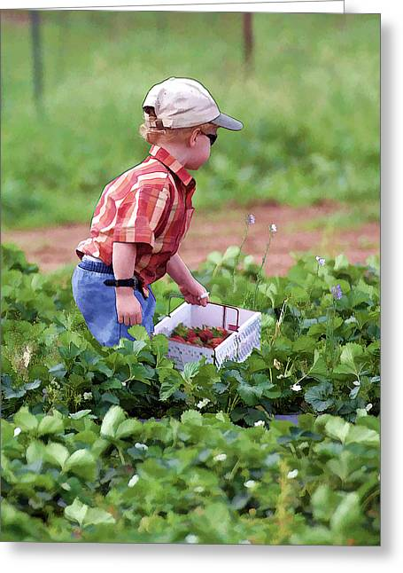 Fence Pole Greeting Cards - Boy Picking Strawberries - Oil Painting Greeting Card by Linda Phelps