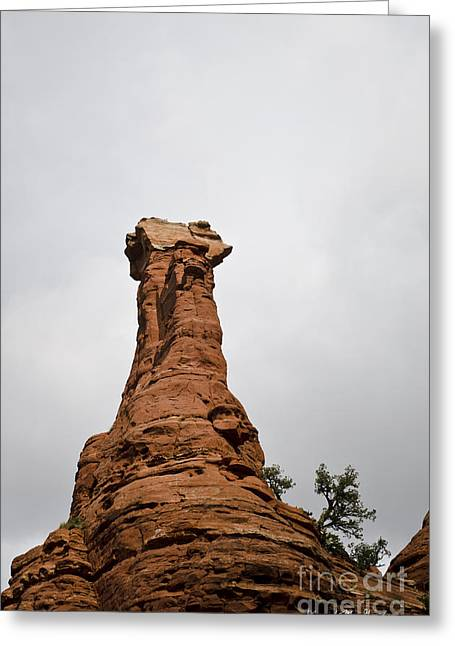 Elevation Digital Art Greeting Cards - Boynton Canyon IV Greeting Card by David Gordon