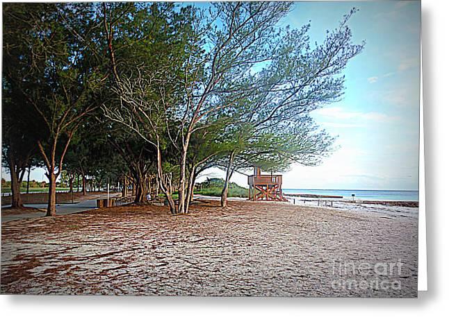 Your Choice Greeting Cards - Bradenton Beach  Pine Trees Greeting Card by Lou Ann Bagnall