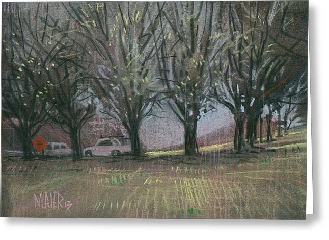 Bradford Greeting Cards - Bradford Pears Greeting Card by Donald Maier