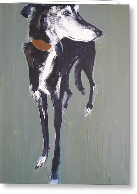 Bradley Lurcher, 2011 Oil On Paper Greeting Card by Sally Muir