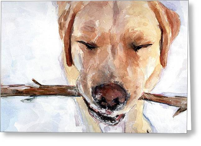 Yellow Dog Paintings Greeting Cards - Brain Freeze Greeting Card by Molly Poole