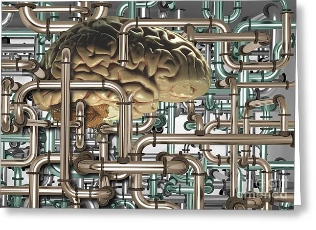 Drain Greeting Cards - Brain In Pipes Greeting Card by Mike Agliolo