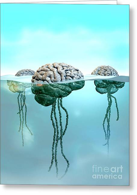 Unconsciousness Greeting Cards - Brains in a Sea of Consciousness Greeting Card by Russell Kightley