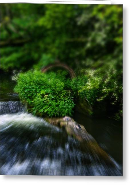 Branch Over The River Wye - In Bakewell Peak District - England Greeting Card by Doc Braham