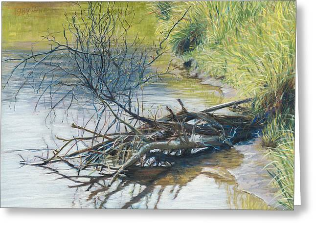 Birdseye Greeting Cards - Branches by a River Bank Greeting Card by Nick Payne