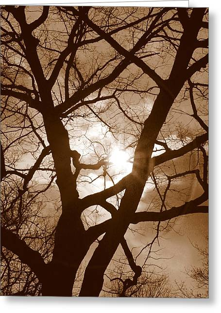 Sad Moon Greeting Cards - Branches in the Dark 2 Greeting Card by Valentino Visentini
