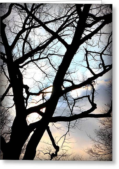 Sad Moon Greeting Cards - Branches in the Dark Greeting Card by Valentino Visentini