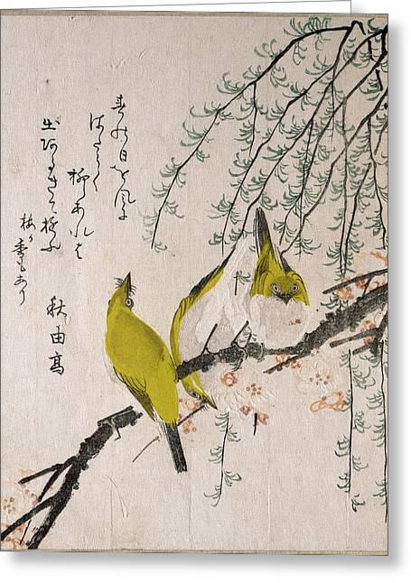 Plum Drawings Greeting Cards - Branches of Plum Tree and Willow with Japanese White-Eyes Greeting Card by Kubo Shunman