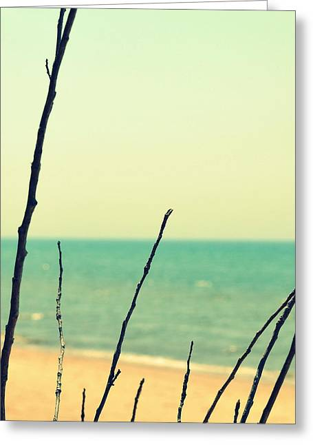Sand Patterns Greeting Cards - Branches on the Beach Greeting Card by Michelle Calkins