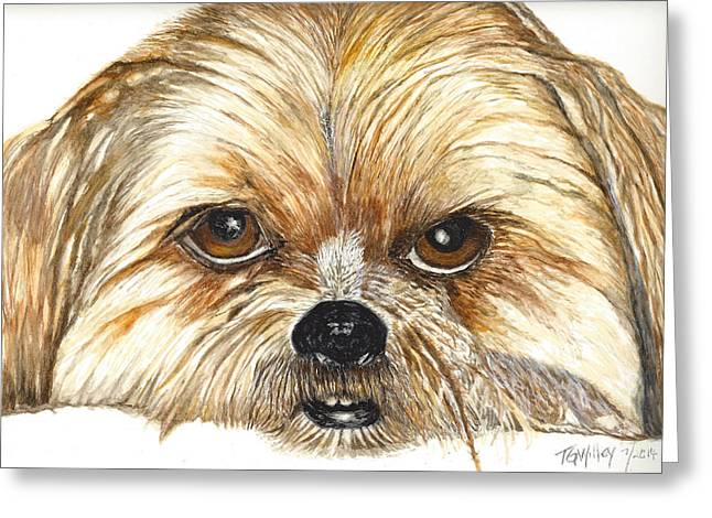Shh Greeting Cards - Brando Greeting Card by Toni Willey