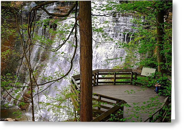 Willow Lake Greeting Cards - Brandywine Falls Greeting Card by Frozen in Time Fine Art Photography