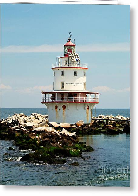 Brandywine Greeting Cards - Brandywine Shoal  Lighthouse Greeting Card by Nick Zelinsky
