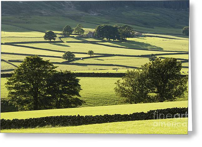 Bransdale The North Yorkshire Moors England Greeting Card by John Potter