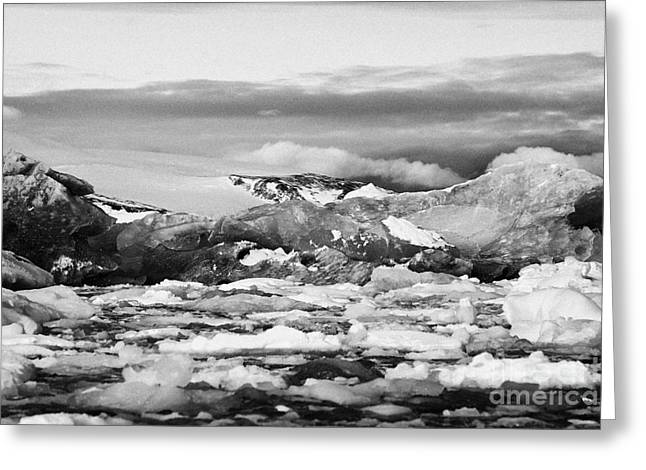 Merging Greeting Cards - brash sea pack ice forming together with dirty blue iceberg as winter approaches cierva cove Antarct Greeting Card by Joe Fox
