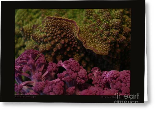 Broccoli Greeting Cards - Brassica Landscape Greeting Card by Patricia Overmoyer