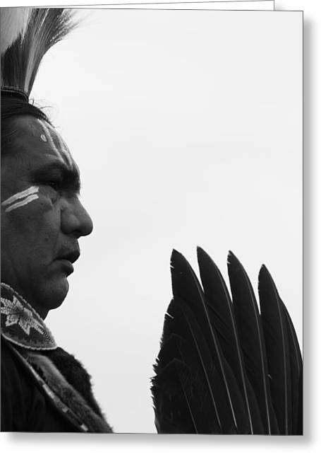 Cree Greeting Cards - Brave Eagle Feathers Greeting Card by Jerry Cordeiro