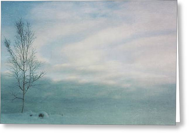Winterscape Greeting Cards - Brave The Black Frost Greeting Card by Priska Wettstein
