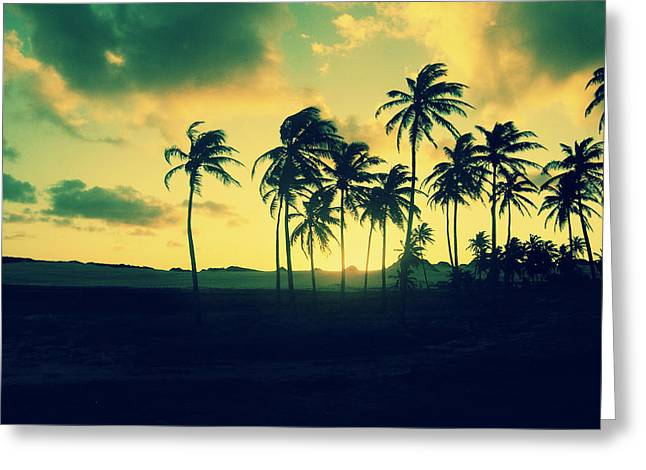 Tree Silhouette At Sunset Greeting Cards - Brazil Palm Trees at Sunset Greeting Card by Patricia Awapara