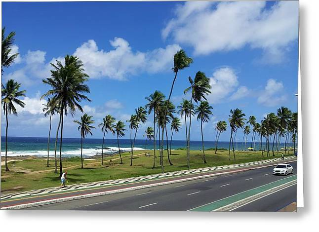 Paradise Road Greeting Cards - Brazilian Paradise Greeting Card by Mountain Dreams