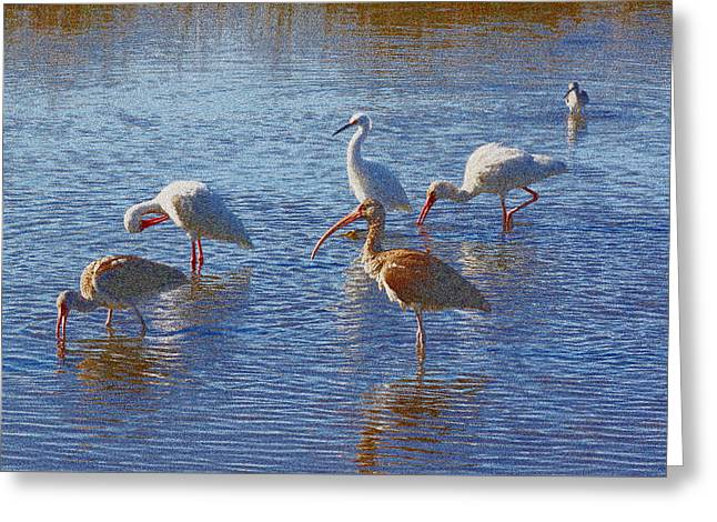 Jacksonville Greeting Cards - Breakfast At Sisters Creek Greeting Card by Ross Lewis