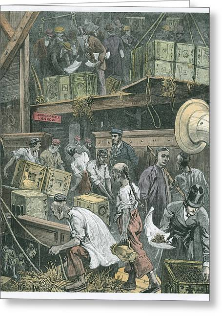 Imported Greeting Cards - Breaking Bulk On Board A Tea Ship Greeting Card by William Bazett Murray