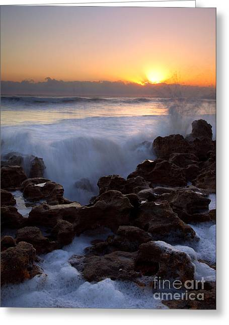 Coral Greeting Cards - Breaking Dawn Greeting Card by Mike  Dawson