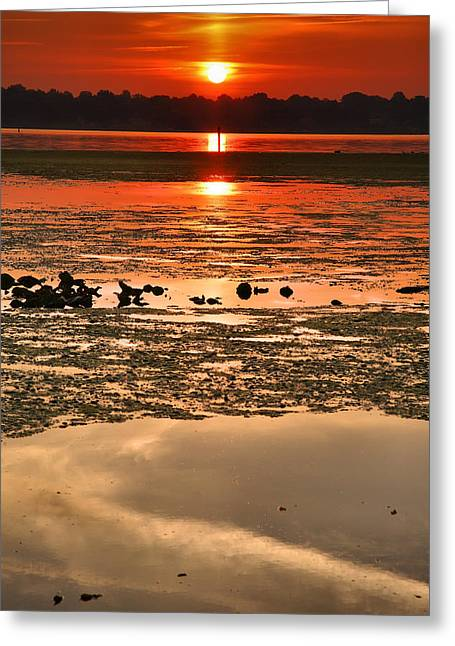 Wildlife Refuge. Greeting Cards - Breaking Dawn Greeting Card by Steven Ainsworth