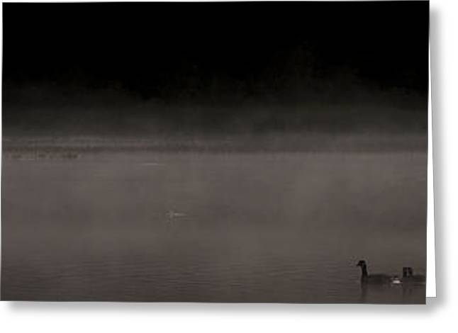 Ducks Lakes Greeting Cards - Breaking the Surface Greeting Card by Aaron S Bedell