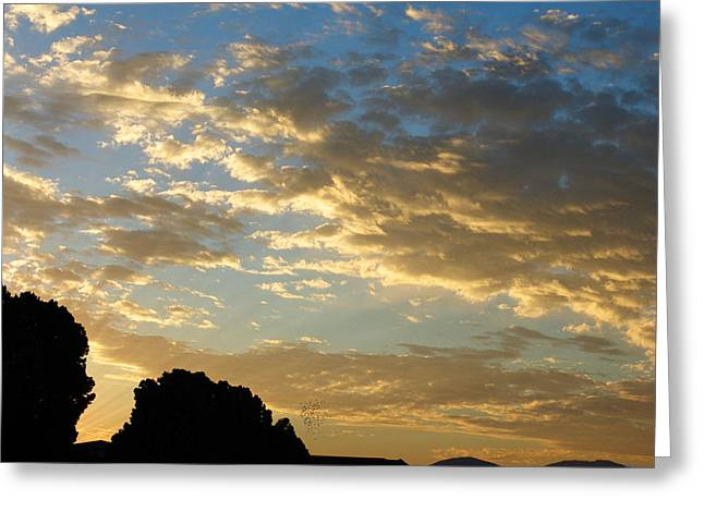 Mccarthy Art Greeting Cards - Breaking Through Greeting Card by Glenn McCarthy Art and Photography